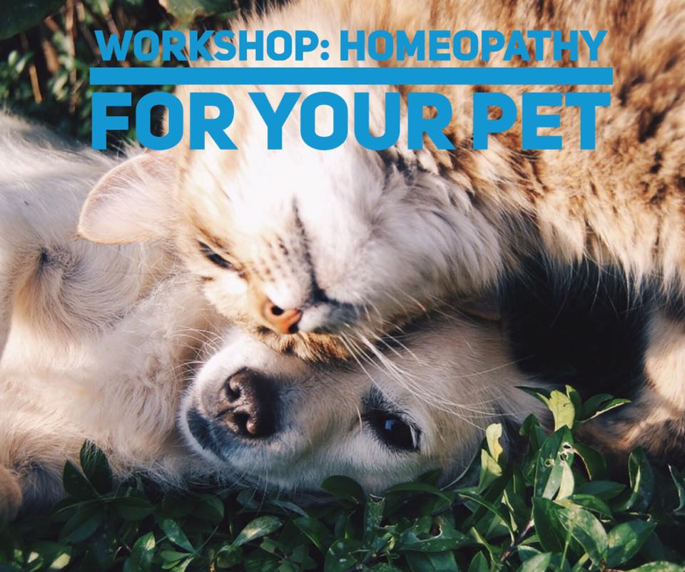 Unique Opportunity: 'Homeopathy for your Pet' Workshop