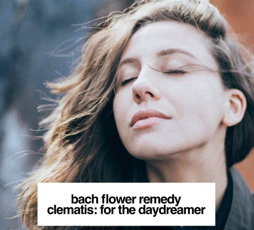 Bach Flower Remedy