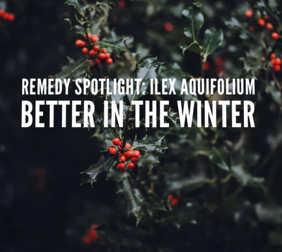 Remedy: Ilex Aquifolium