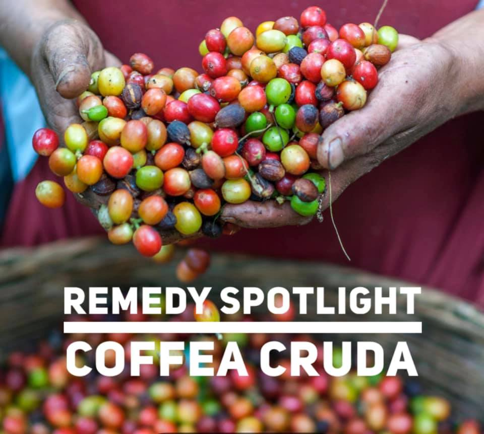 Remedy Spotlight: Coffea Cruda
