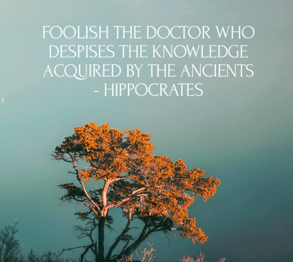 Foolish the doctor who despises the knowledge acquired by the ancients.