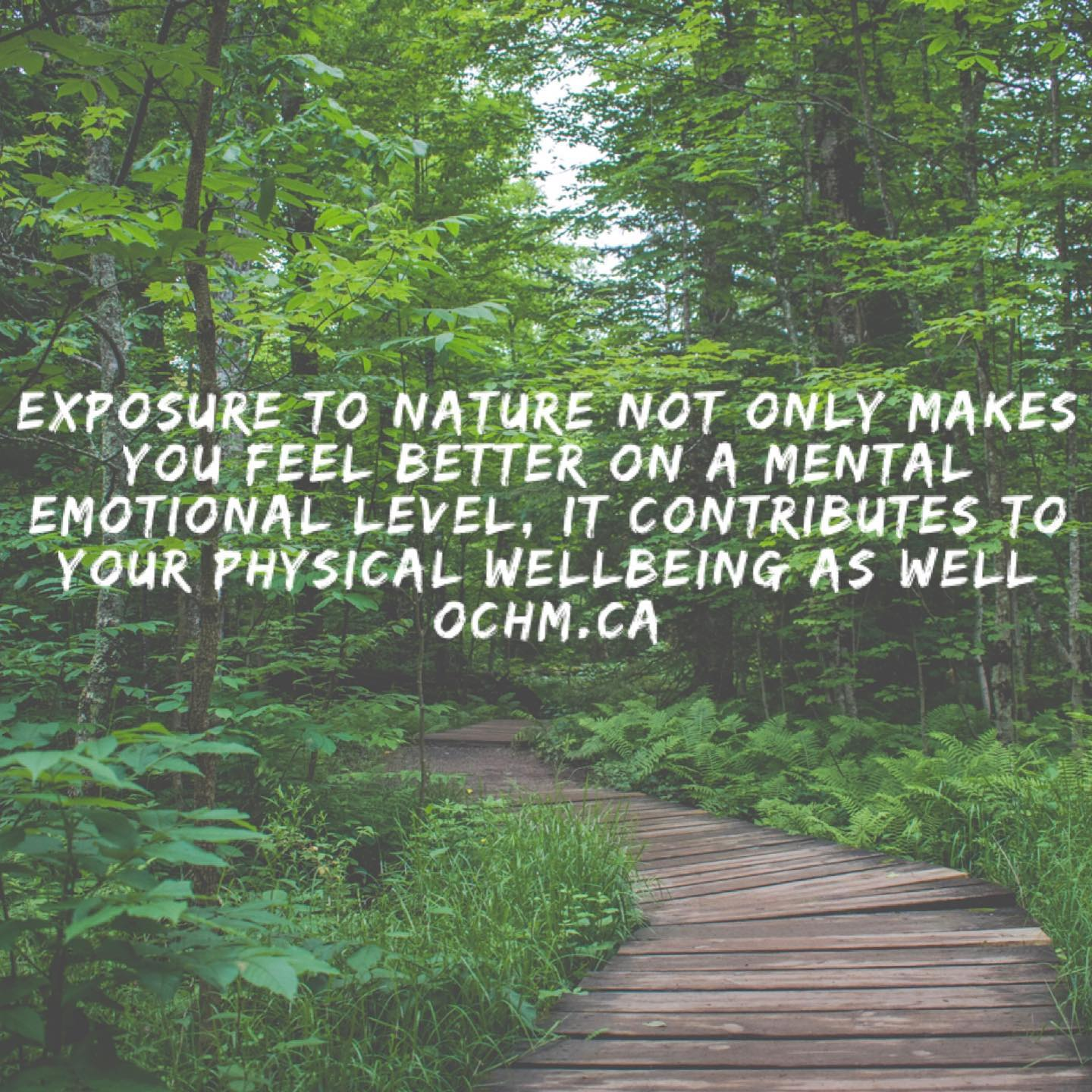 Exposure to Nature Increases Feel-Good Emotions