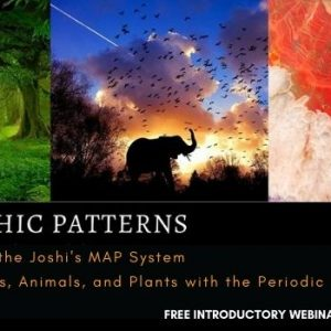 Joshi's MAP System