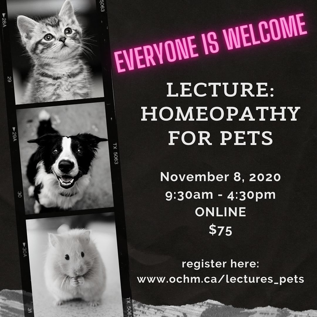 Lecture: Homeopathy for Pets