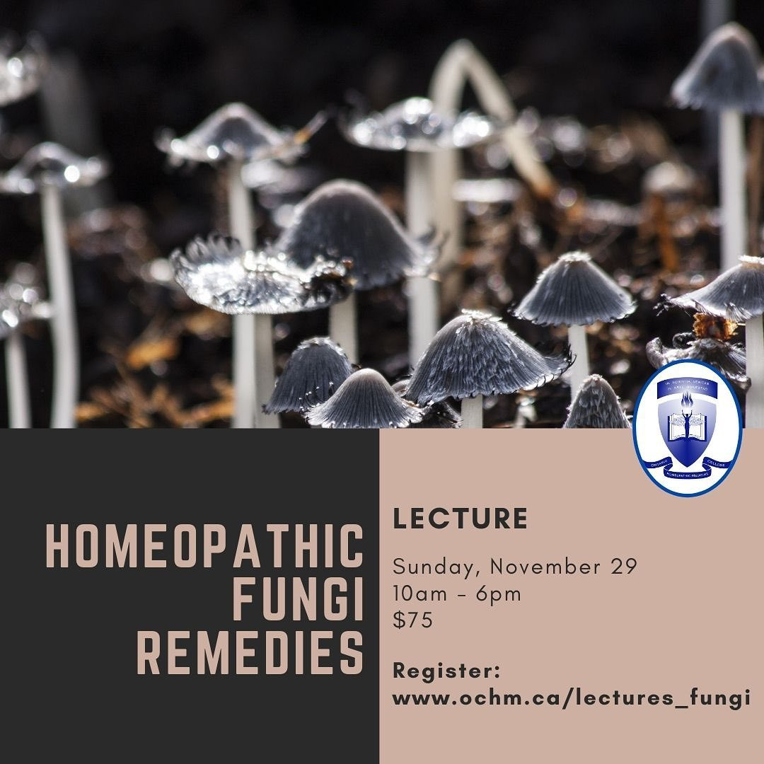 Lecture: Homeopathic Fungi Remedies