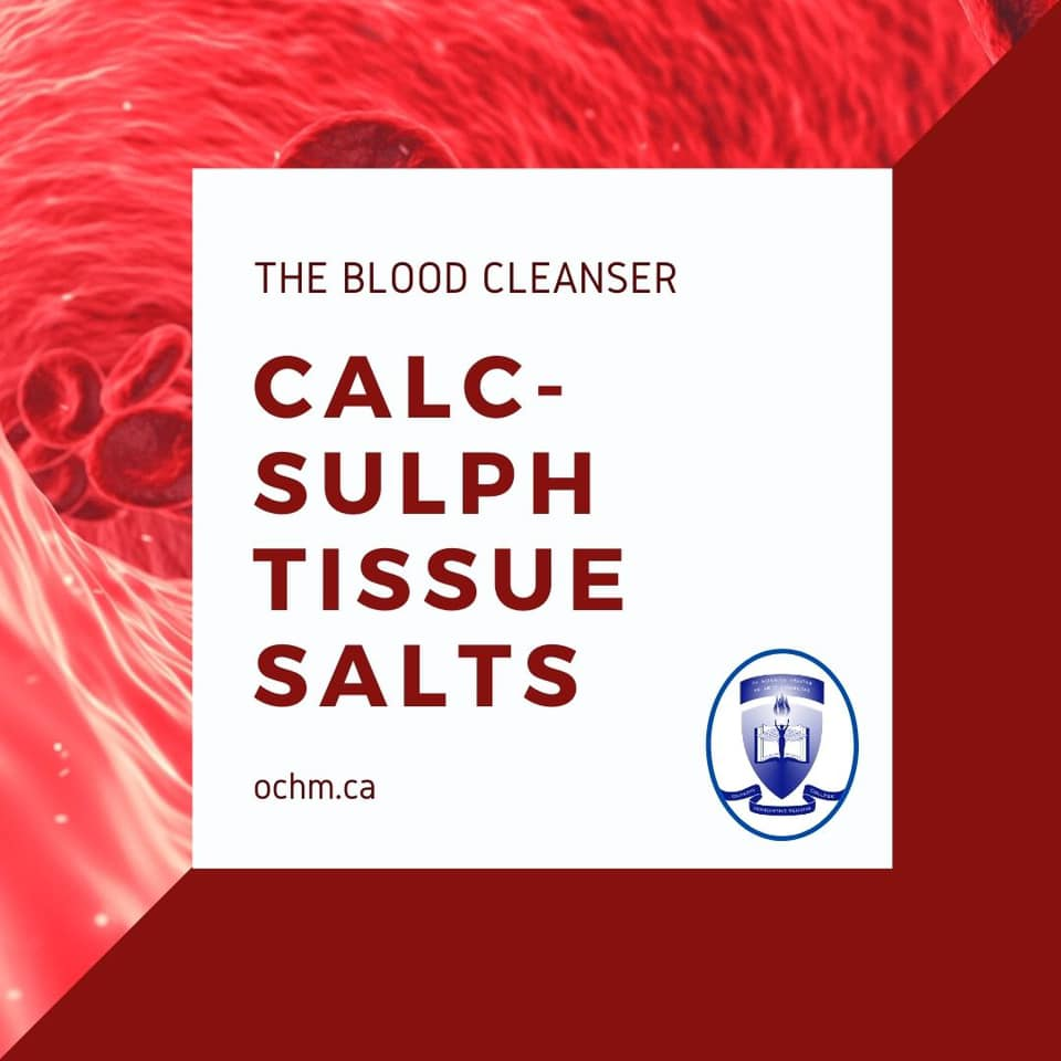 "Calc-sulph Tissue Salts is considered ""the Blood Cleanser"""