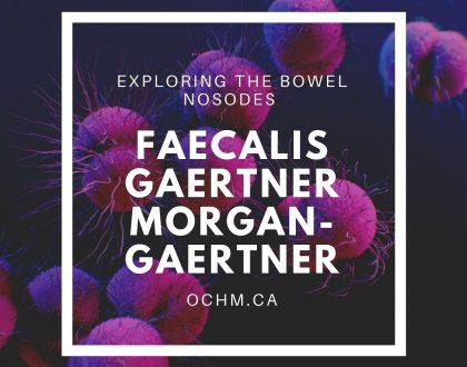 Materia Medica on three Bowel Nosodes: Faecalis, Gaertner and Morgan-Gaertner