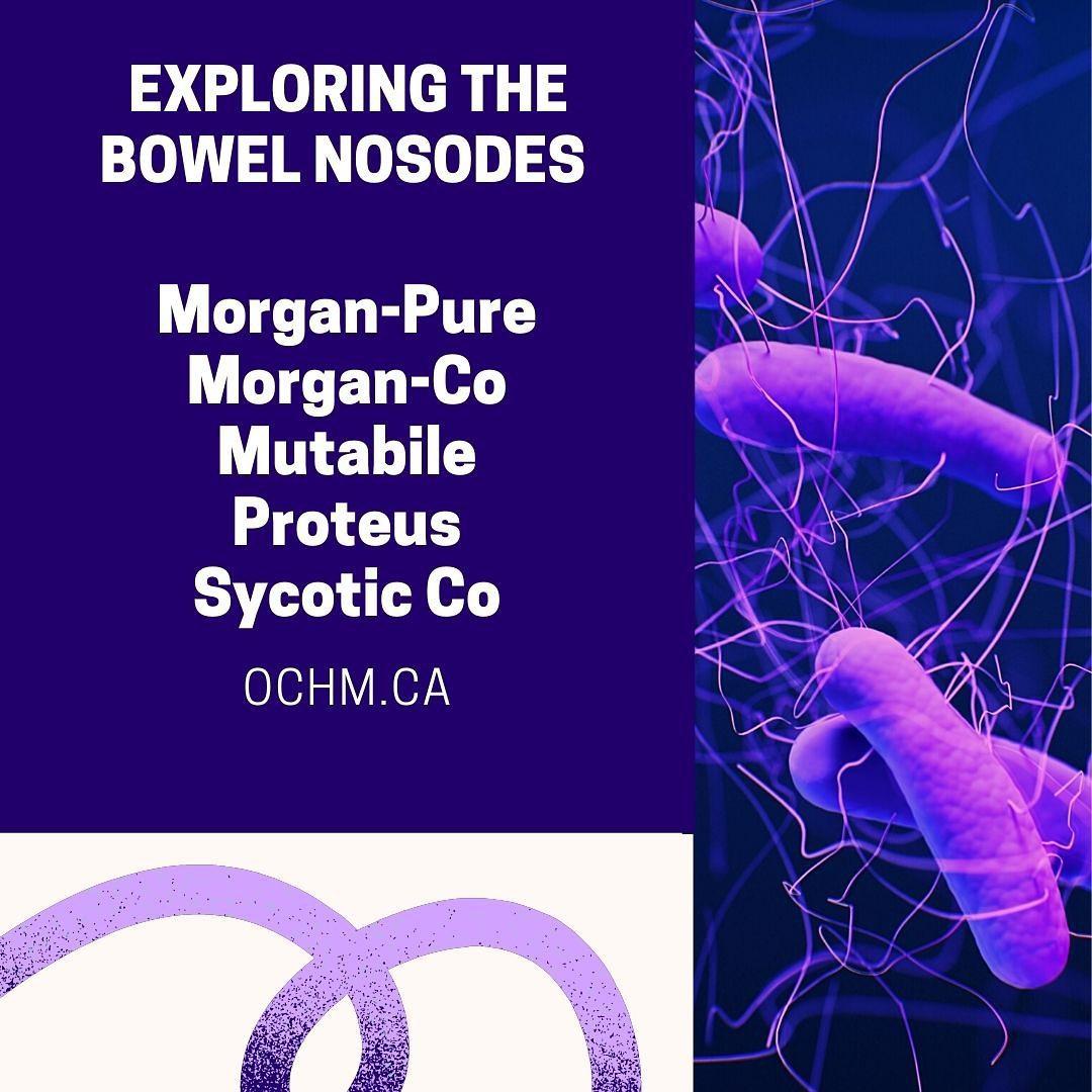 Materia Medica on five Bowel Nosodes: Morgan Pure, Mutabile, Proteus and Sycotic Co