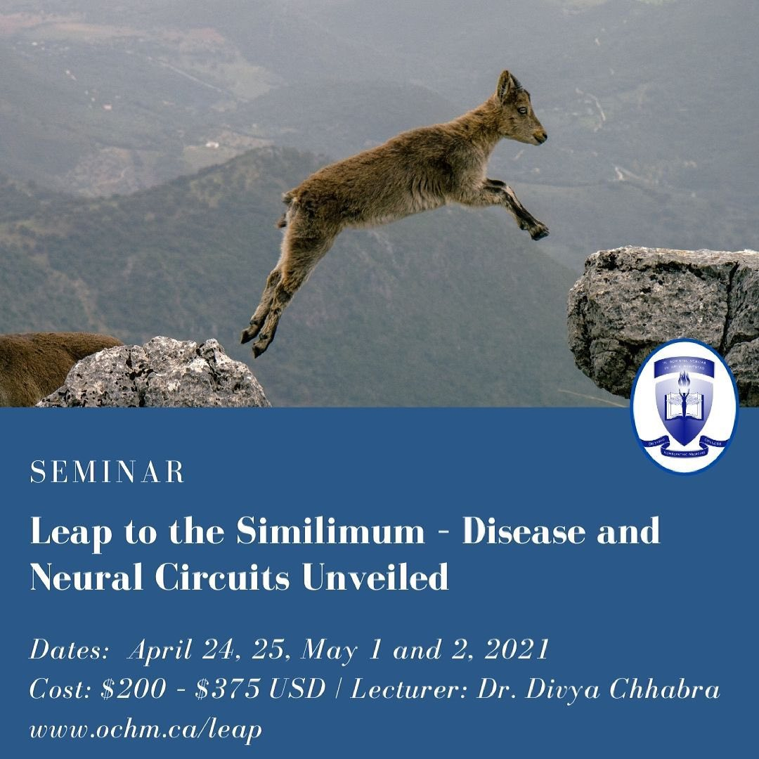 Seminar: Leap to the Similimum – Disease and Neural Circuits Unveiled